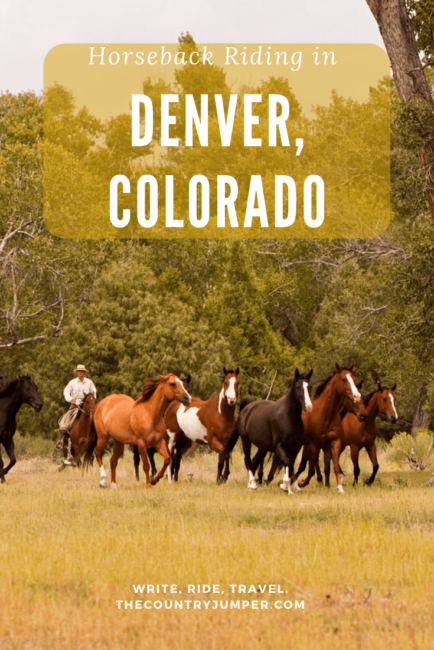 Horseback riding in Denver, Colorado is a great way to get out into the mountains. For horse lovers or newbies alike, get on and go out with Bear Mountain Stables for an experience like no other!