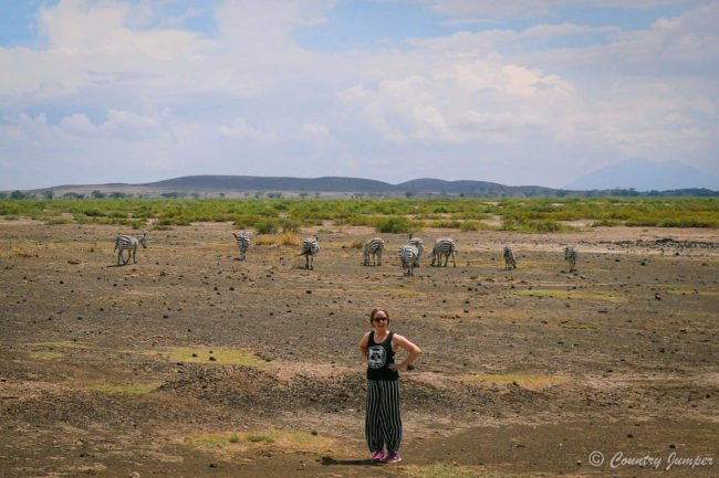 woman in black and white pants with hands on hips standing in plains in front of herd of zebras beneath a blue sky and with green bush in the background
