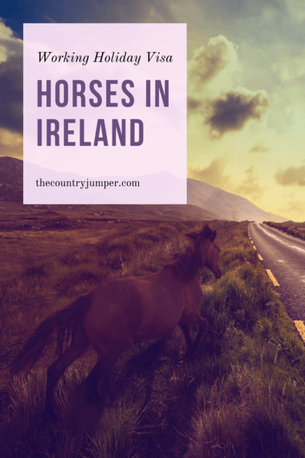 A Working Holiday Visa in Ireland gives you the opportunity to work for a year without needing a sponsor. Read more about how to get the visa and some of the things you might want to do while you're in Ireland. #workingholidayvisa #livinginireland #workingabroad