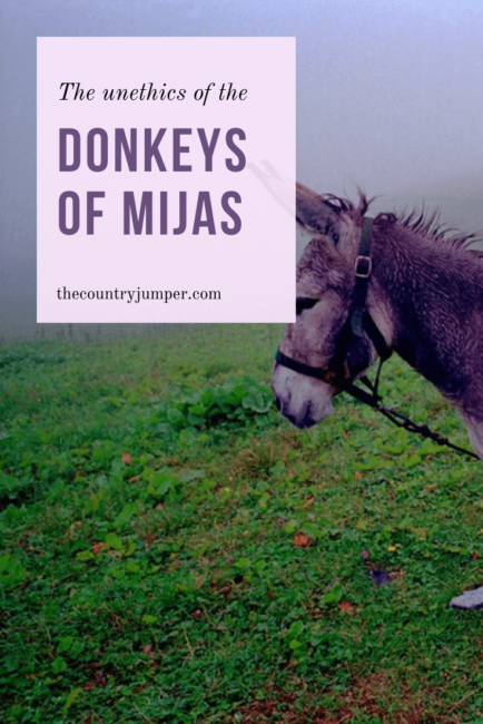 If you're visiting the small Spanish village of Mijas, Spain you might encounter the donkey taxis there. While it may seem sweet and tempting to go for a 'taxi' ride, there is a lot more you need to know. Read to uncover the dirty secrets of Mijas, Spain. #mijasspain #costadelsol #spanishcoast