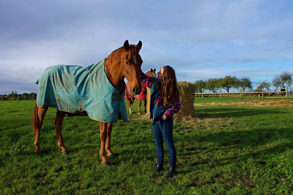 woman in flannel shirt and jeans standing with chestnut horse wearing a green blanket